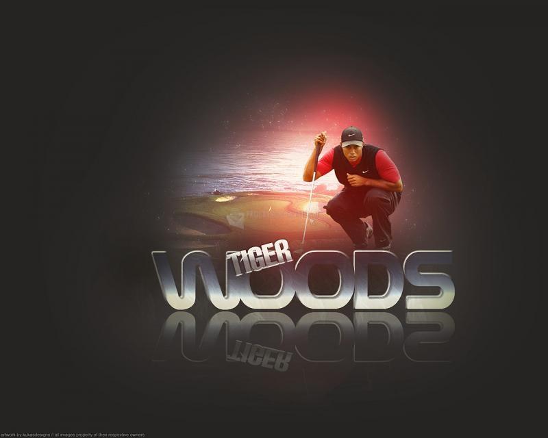 Pantallazo Tiger Woods