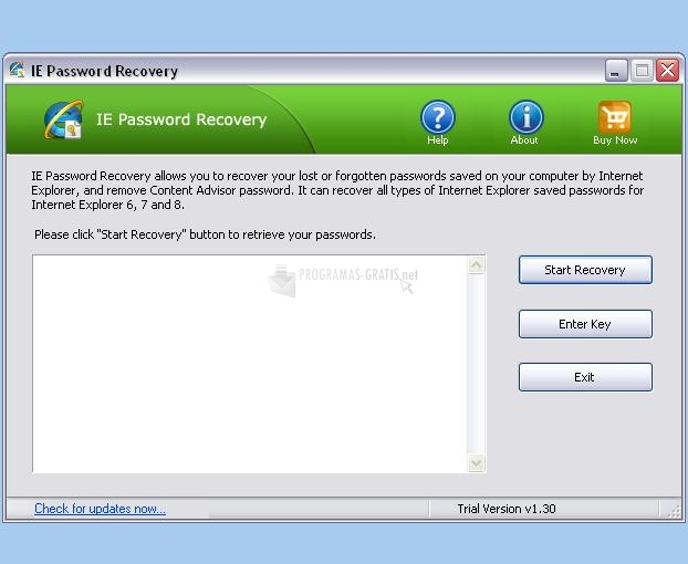 Pantallazo TOP IE Password Recovery