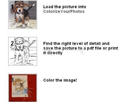 Pantallazo Colorize Your Photos