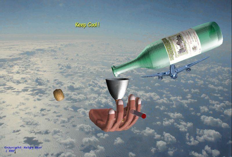 Pantallazo Fly Away
