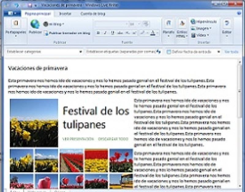 Pantallazo Windows Live Writer (Vista/7)