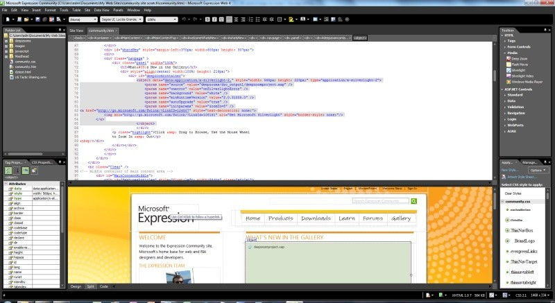 Pantallazo Microsoft Expression Studio Web Professional
