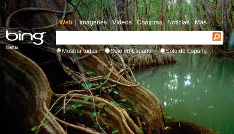 Pantallazo Bing Desktop