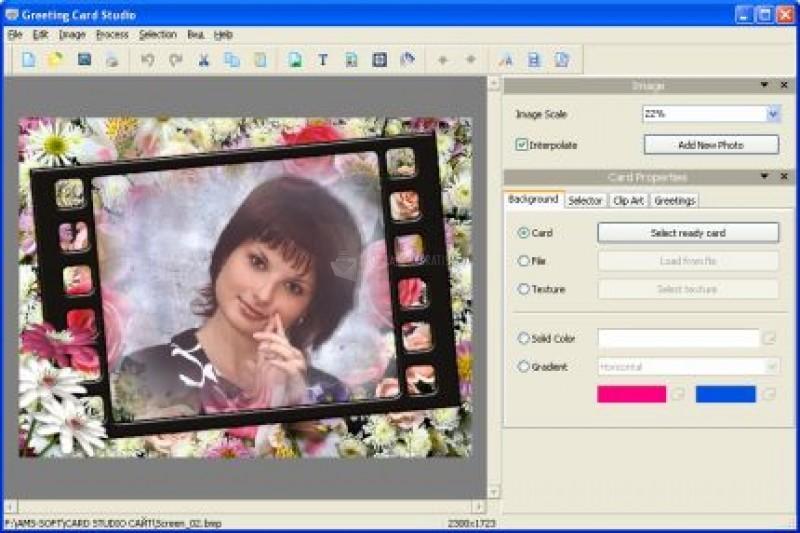 Pantallazo AMS Greeting Card Studio