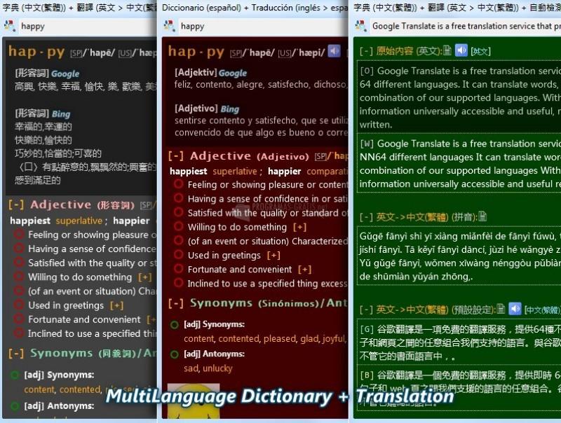 Pantallazo Dictionary.NET