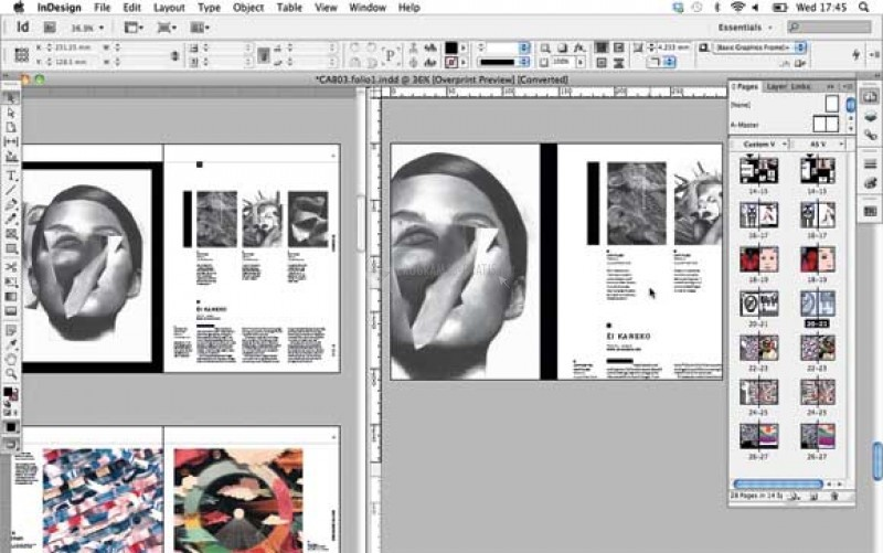 Pantallazo Adobe InDesign