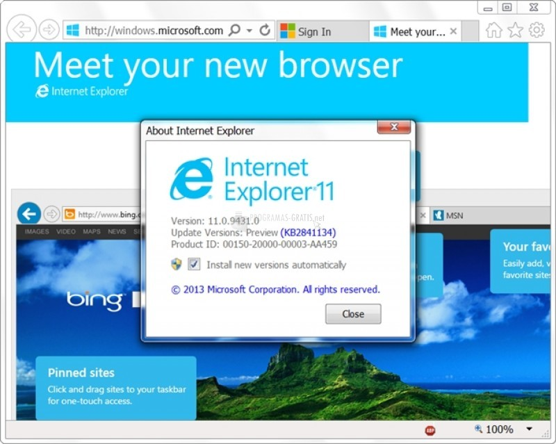 Pantallazo Internet Explorer 11 Developer Preview