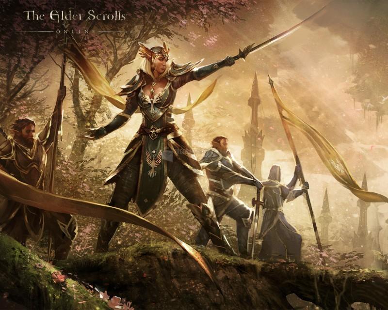Pantallazo The Elder Scrolls Online