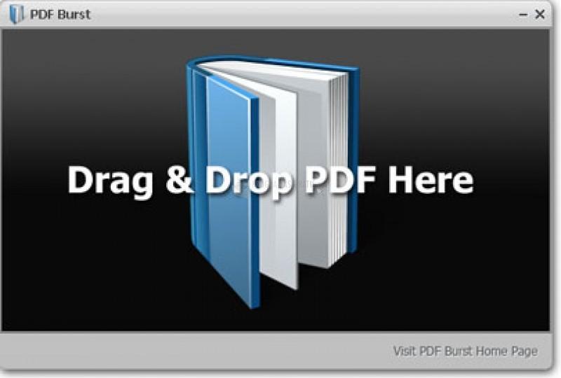 Pantallazo PDF Burst
