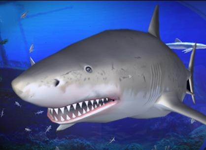 Pantallazo Free Living 3D Sharks ScreenSaver