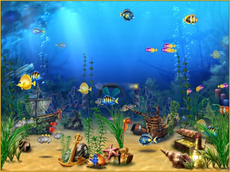 screen seever acquario gratis pc