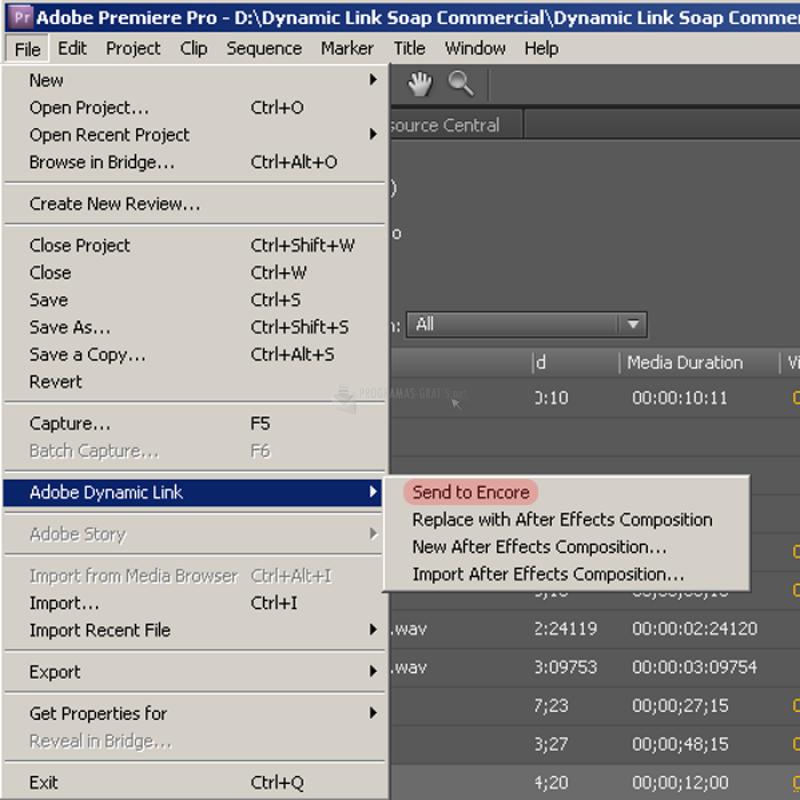 Pantallazo Adobe Dynamic Link