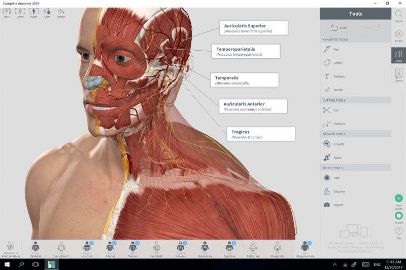 Complete Anatomy - Descargar Gratis En Español