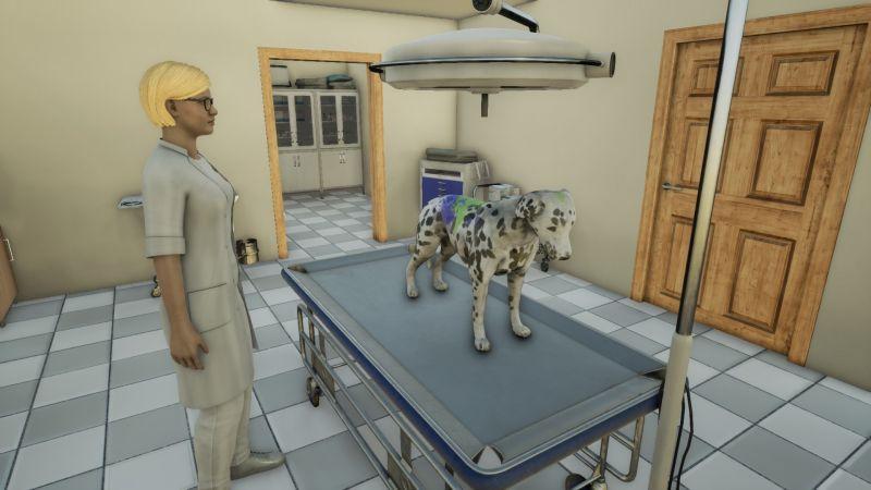 Pantallazo Animal Doctor