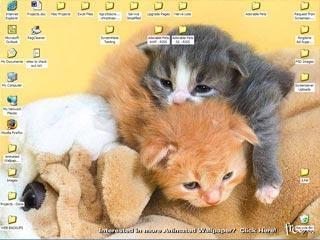 Pantallazo Free Adorable Pets 3