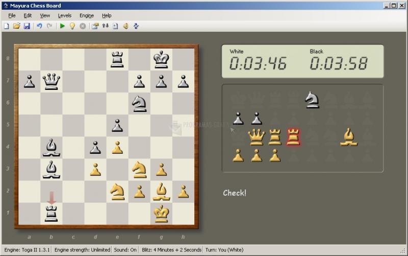 Pantallazo Mayura Chess Board