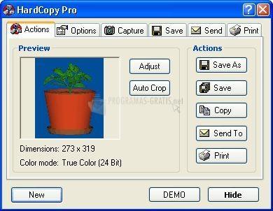 Pantallazo DeskSoft Hardcopy Pro
