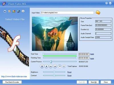 Pantallazo Flash Video MX