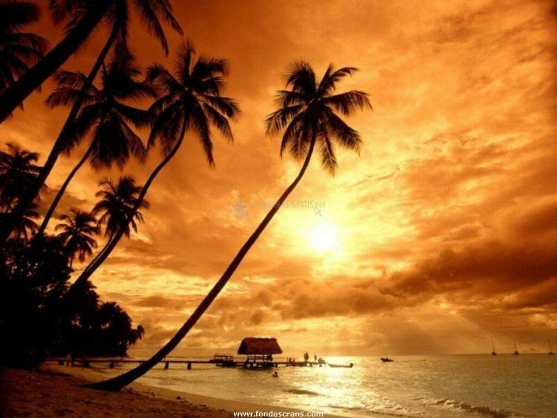 Pantallazo Puesta de Sol en la Playa