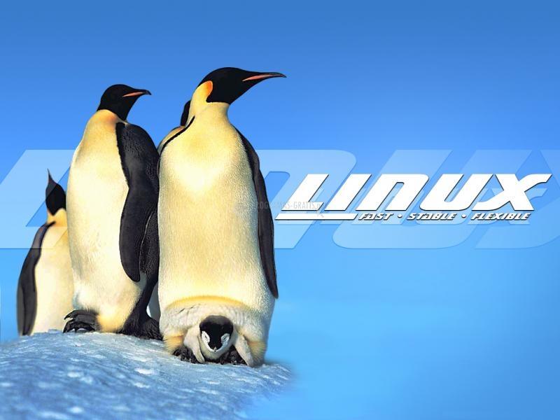 Pantallazo Fondo de Escritorio Linux