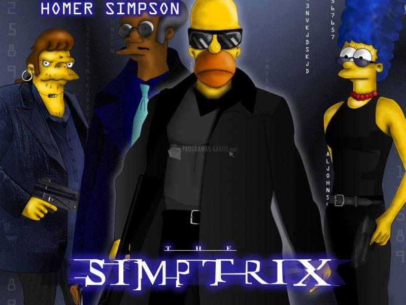 Pantallazo Homero Matrix