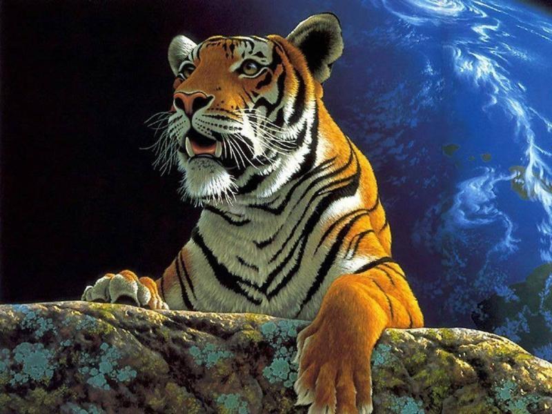 Pantallazo Tigre