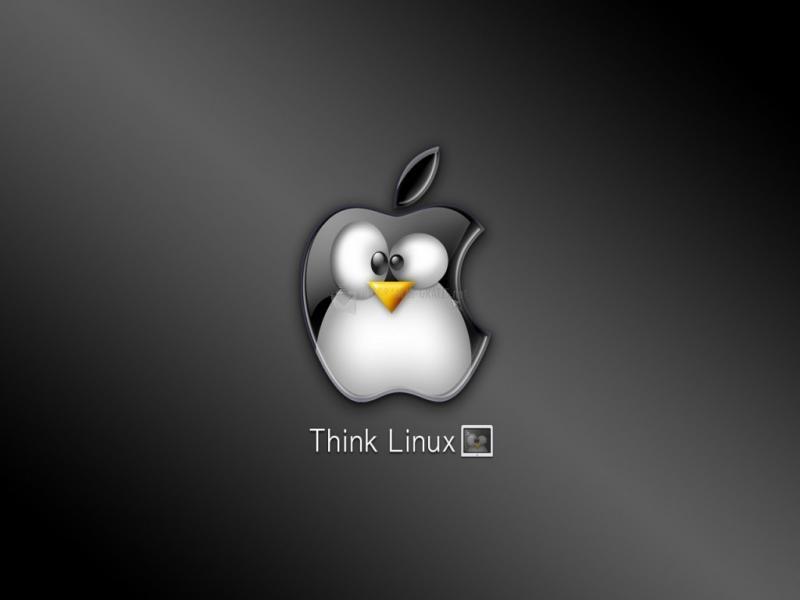 Pantallazo Piensa Linux