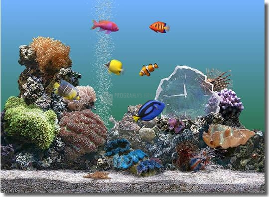 Descargar serenescreen marine aquarium 3 2 gratis para windows for Bajar protector de pantalla gratis