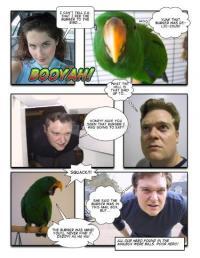 Pantallazo Comic Life