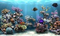 Pantallazo Sim Aquarium Free Tank