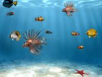 Pantalla Sim Aquarium Free Tank