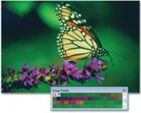 Captura Corel Draw Graphics Suite