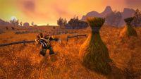 Pantalla World of Warcraft Classic
