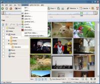 Screenshot Adobe Photoshop Album SE