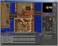 Screenshot Tibia